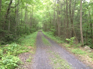 Stony Valley Rail Trail